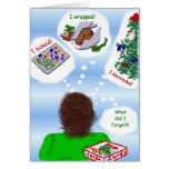 Belated Holiday Greetings Greeting Card