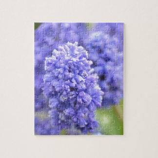 Belces azules azules puzzle con fotos