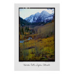 Belces marrón, Aspen, Colorado Poster
