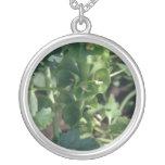 Belces verdes de las flores de Irlanda (Moluccella Pendientes Personalizados