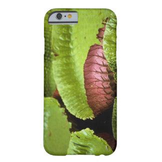 Belem, Brazil. Vitoria Regia (Victoria Barely There iPhone 6 Case