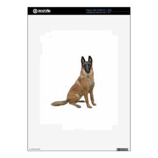Belga Malinois Calcomanía Para iPad 2