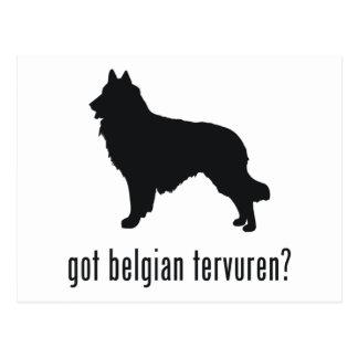 Belga Tervuren Tarjeta Postal