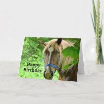 Belgian Draft Horse Birthday Card