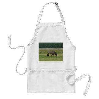 Belgian Draft Horse-brown/grey grazing Adult Apron