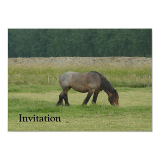 Belgian Draft Horse-brown/grey grazing 5x7 Paper Invitation Card