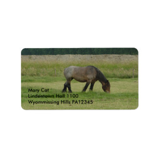 Belgian Draft Horse-brown/grey grazing Label