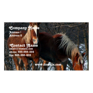 Belgian Draft Horse Business Card