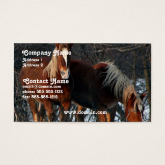 Belgian Draft Horse Business Card