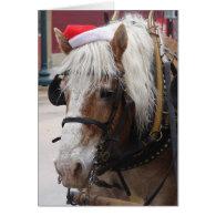 Belgian Draft Horse Christmas Greeting Cards