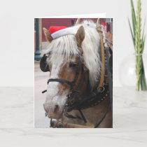 Belgian Draft Horse Christmas Greeting Holiday Card