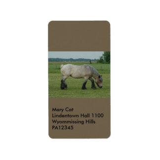 Belgian Draft Horse-color grey grazing Address Label