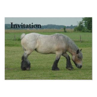 Belgian Draft Horse-color grey grazing 5x7 Paper Invitation Card