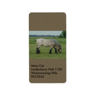 Belgian Draft Horse-color grey grazing Label