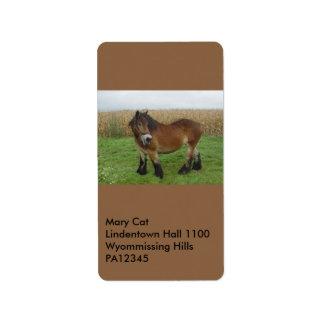 Belgian Draft Horse-looking back Label