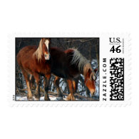 Belgian Draft Horse Postage Stamp