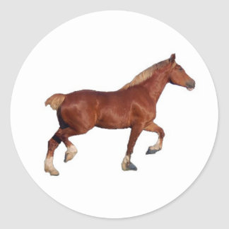 Belgian Draft Horse Sticker