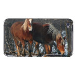 Belgian Draft Horses iTouch Case Barely There iPod Cases