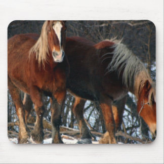 Belgian Draft Horses Mouse Pad