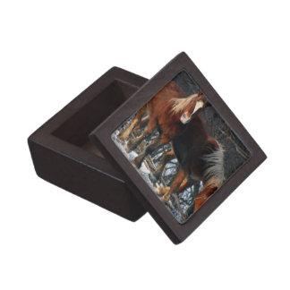 Belgian Draft Horses Premium Gift Box