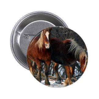 Belgian Draft Horses Round Pin