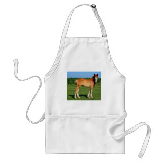 Belgian Filly Adult Apron