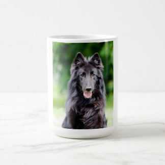 Belgian Groenendael dog, belgian shepherd photo Coffee Mug