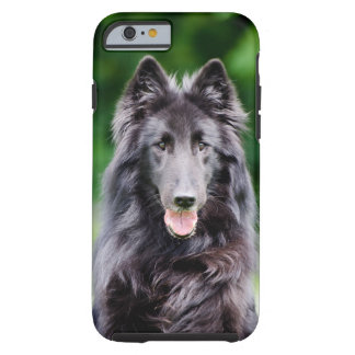 Belgian Groenendael dog, Belgian Shepherd photo Tough iPhone 6 Case