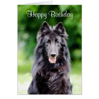 Belgian Groenendael dog custom birthday card