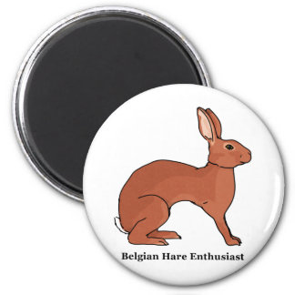 Belgian Hare Enthusiast 2 Inch Round Magnet