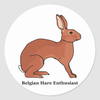 Belgian Hare Enthusiast Classic Round Sticker