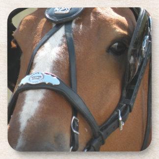 Belgian horse coaster