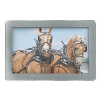 Belgian Horses Rectangular Belt Buckle