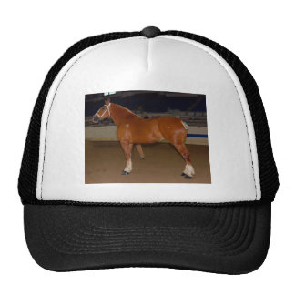 Belgian in show ring trucker hat