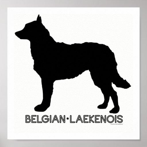 Belgian Lakenois Print