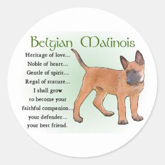 Belgian Malinois Gifts Sticker