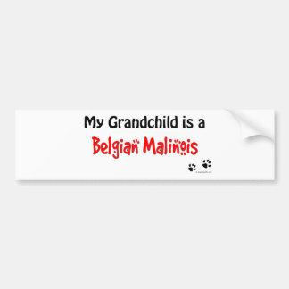 Belgian Malinois Grandchild Car Bumper Sticker