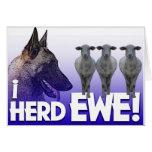 Belgian Malinois I Herd EWE (I heard you) PUN Greeting Card