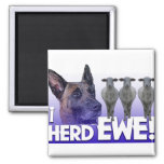 Belgian Malinois  -I Herd EWE - PUN - I HEARD YOU Fridge Magnet