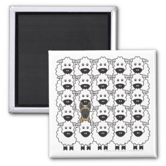 Belgian Malinois in the Sheep 2 Inch Square Magnet