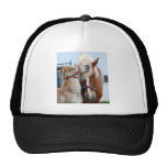 belgian Mare and Filly Mesh Hat