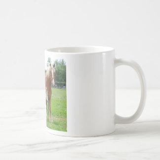 Belgian Mare and Filly Coffee Mugs