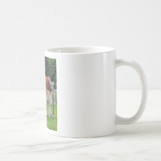 belgian Mare and Filly Coffee Mug