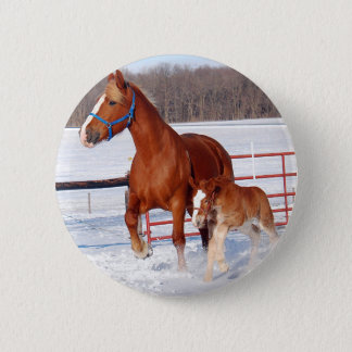 Belgian Mare and Filly Pinback Button