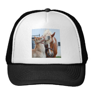 belgian Mare and Filly Trucker Hat