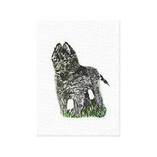 Belgian Sheepdog Canvas Print