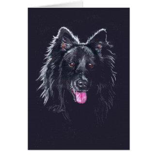 Belgian Sheepdog on Black Greeting Card