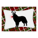 Belgian Sheepdog Reindeer Christmas Card
