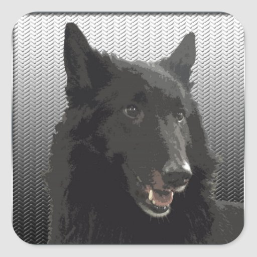 Belgian Sheepdog Sticker
