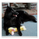 Belgian Shepherd by the Fireplace Poster
